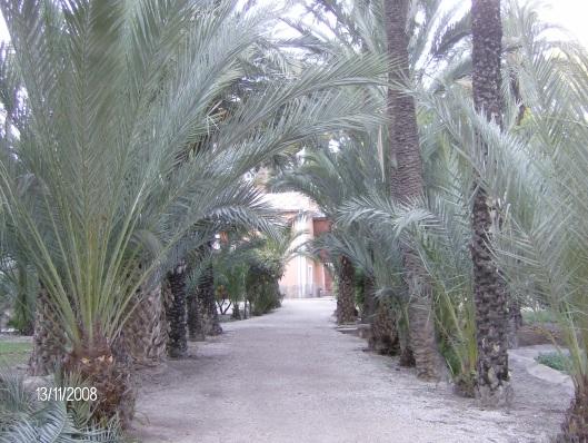 Vakantie Spanje 2008 077