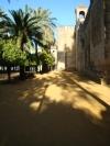 Spanje_andalucia_2009_462