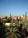 Spanje_andalucia_2009_468