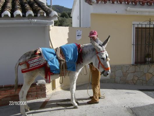 Vakantie Spanje 2008 504